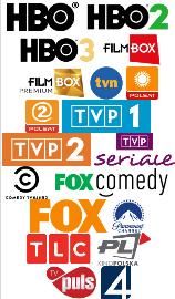 polska telewizja w Niemczech